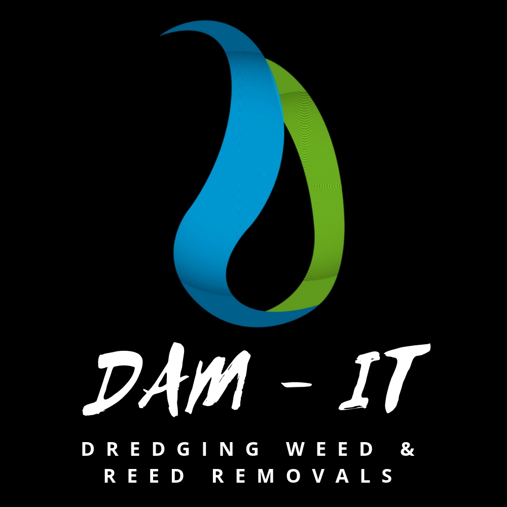 Dam-It Logo square b and w